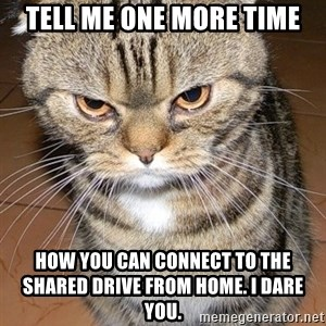 angry cat 2 - Tell me one more time How you can connect to the shared drive from home. I Dare you.