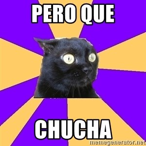 Anxiety Cat - pero que chucha