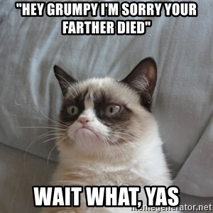 "Grumpy cat 5 - ""hey grumpy i'm sorry your farther died"" wait what, yas"
