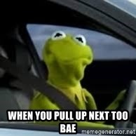 kermit the frog in car -  when you pull up next too bae