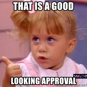 thumbs up - That is a Good looking approval