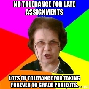 teacher - NO TOLERANCE FOR LATE ASSIGNMENTS LOTS OF TOLERANCE FOR TAKING FOREVER TO GRADE PROJECTS.