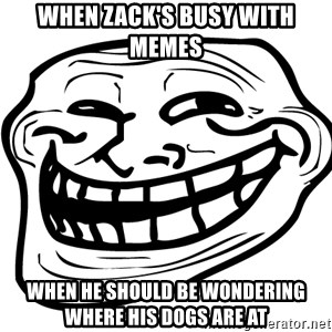 You Mad - When zack's Busy with memes  When he should be wondering where his Dogs are at