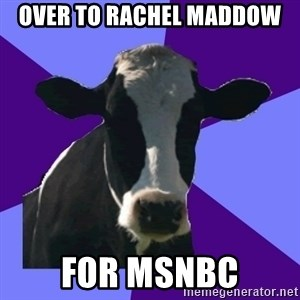Coworker Cow - over to Rachel Maddow for MSNBC