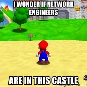 Mario looking at castle - I wonder if Network Engineers are in this castle