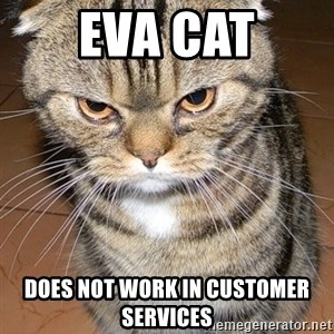angry cat 2 - eva cat does not work in customer services