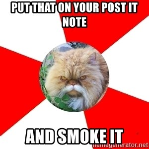 Diabetic Cat - Put that on your post it note and smoke it
