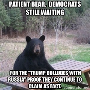 "Patient Bear - PATIENT BEAR.  DEMOCRATS  STILL WAITING  for the ""trump colludes with russia"" proof they continue to claim as fact."