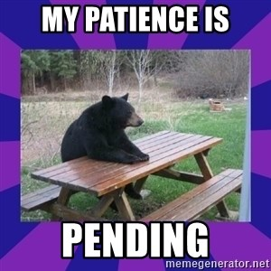 waiting bear - My patience is Pending
