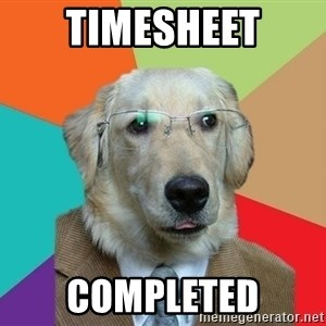 Business Dog - Timesheet completed