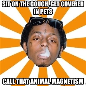 Lil Wayne Meme - sit on the couch, get covered in pets call that animal magnetism