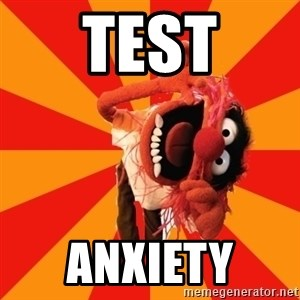 Animal Muppet - test anxiety
