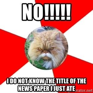 Diabetic Cat - No!!!!! I do not know the title of the News paper i just ate