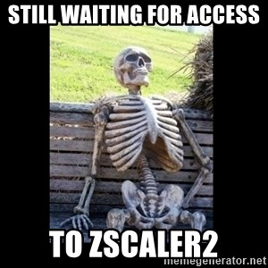 Still Waiting - Still waiting for access  to Zscaler2