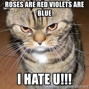 angry cat 2 - Roses are red violets are blue i hate u!!!