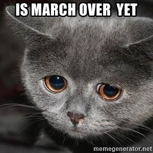 sad cat - is march over  yet