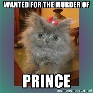 cute cat - Wanted For the murder of prince