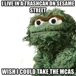 Sad Oscar - i live in a trashcan on sesame street wish i could take the mcas