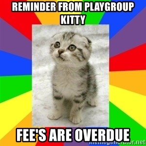 Cute Kitten - reminder from playgroup kitty fee's are overdue