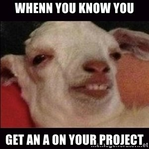 10 goat - whenn you know you get an A on your project