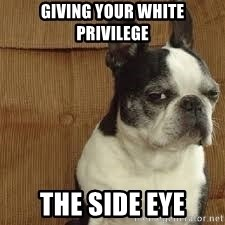side eye doggie - giving your white privilege the side eye
