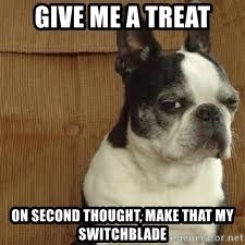 side eye doggie - give me a treat on second thought, make that my switchblade