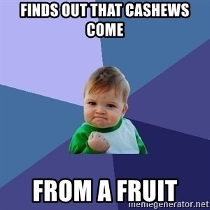 Success Kid - finds out that cashews come from a fruit