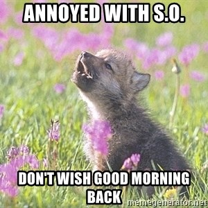 Baby Insanity Wolf - annoyed with s.o. don't wish good morning back