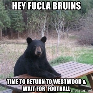 Patient Bear - Hey Fucla bRuins Time to return to Westwood & wait for  football