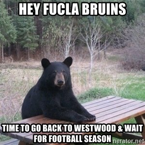 Patient Bear - hey fucla bruins time to go back to westwood & wait for football season