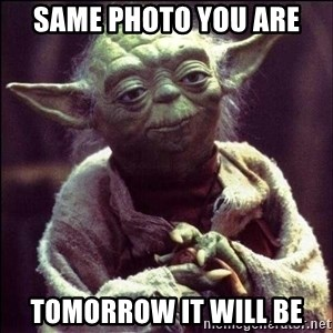 Advice Yoda - same photo you are tomorrow it will be