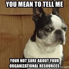 side eye doggie - You MEAN TO TELL ME Your not sure about your organizational resources