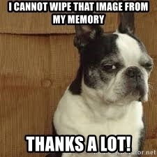 side eye doggie - I cannot wipe that image from my memory Thanks a lot!