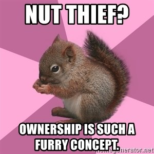 Shipper Squirrel - Nut thief?    Ownership is such a furry conCept.