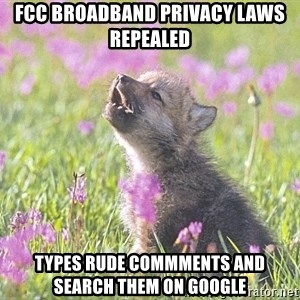 Baby Insanity Wolf - fcc broadband privacy laws repealed types rude commments and search them on google