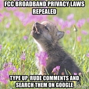 Baby Insanity Wolf - fcc broadband privacy laws repealed type up  rude comments and search them on google