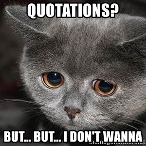sad cat - Quotations? But... but... I don't wanna