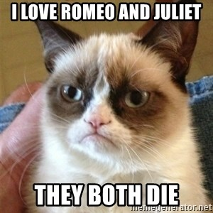 Grumpy Cat  - I LOVE ROMEO AND JULIET THEY BOTH DIE