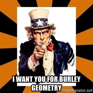 Uncle sam wants you! -  I Want You For Burley Geometry