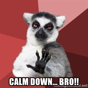 Chill Out Lemur -  CALM DOWN... BRO!!