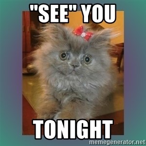 """cute cat - """"see"""" you Tonight"""