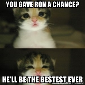 Adorable Kitten - You gave Ron a chance? He'll be the bestest ever