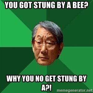 High Expectations Asian Father - You got stung by a bee? why you no get stung by a?!