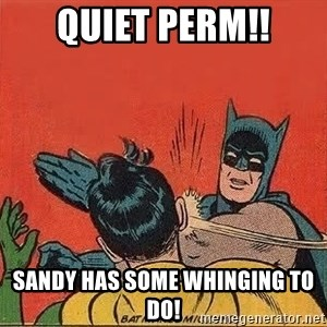 batman slap robin - Quiet perm!! Sandy HAs some whinging to dO!
