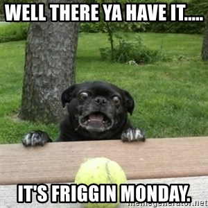 Ermahgerd Pug - well there ya have it..... it's friggin monday.
