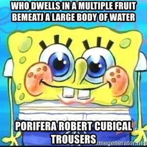 Epic Spongebob Face - Who dwells in a multiple fruit bemeatj a large body of water Porifera robert cubical trousers