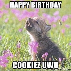 Baby Insanity Wolf - Happy birthday  COOKIEZ uwu