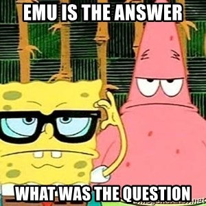 Serious Spongebob - emu is the answer what was the question