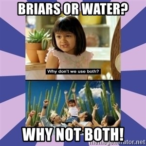 Why don't we use both girl - briars or water? why not both!