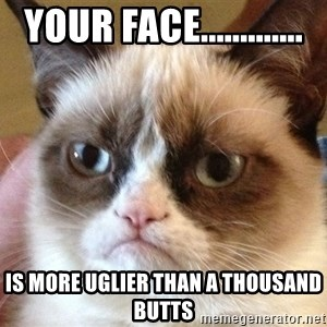 Angry Cat Meme - your face............. is more uglier than a thousand butts